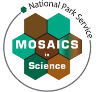 Mosaics In Science - Mosaics in science