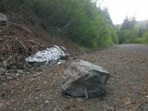 Boulder remnant from a rockfall at Westside Road, photo by self