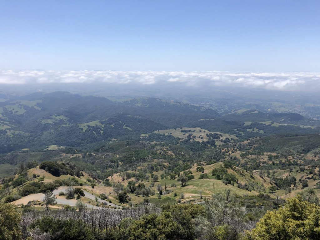 From the summit of Mount Diablo State Park above the clouds