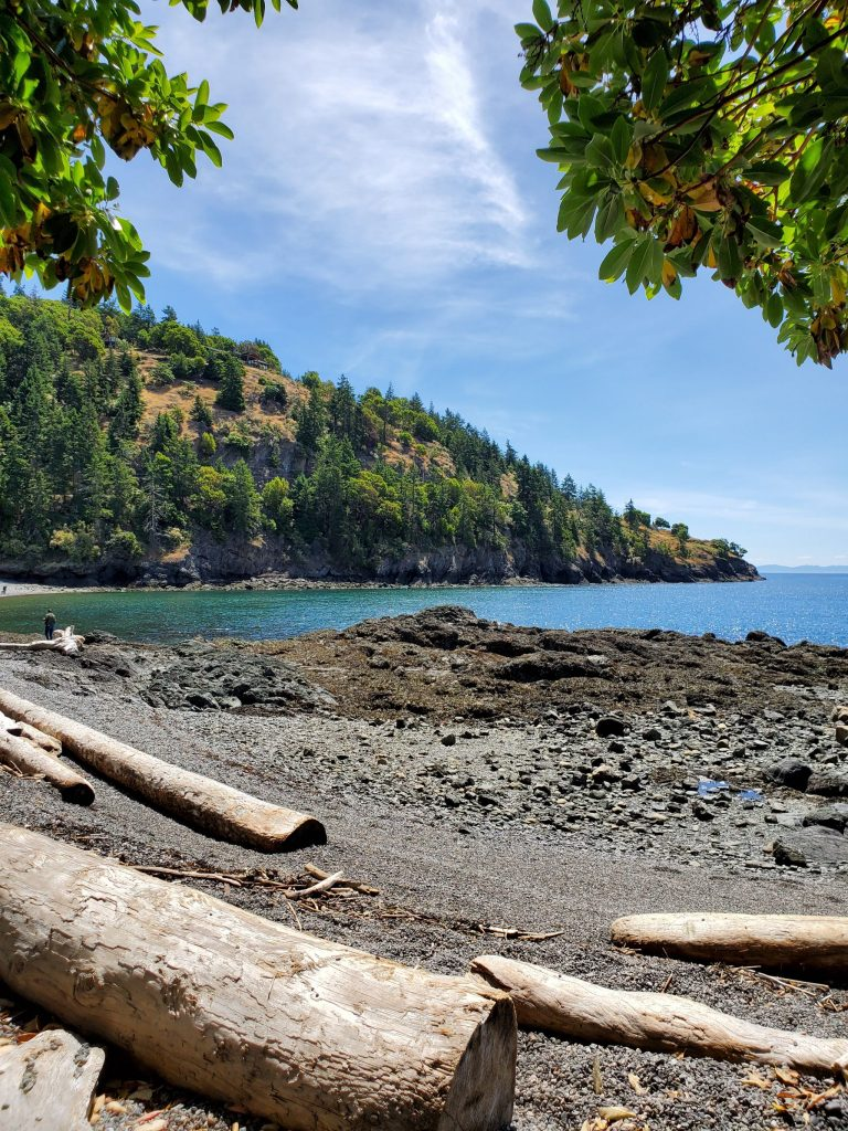 View from the shade of Deadman's cove. This beach is located within Limekiln state park, a prime whale watching spot.