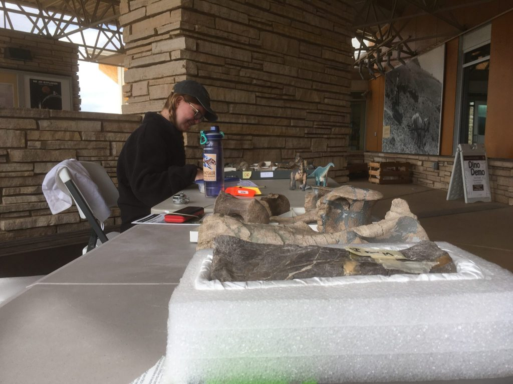 Kellyn working at our Dino Demo table on Thursday.