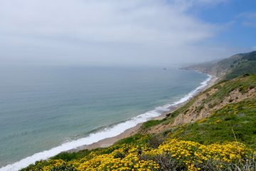 Wildcat Beach from Coastal Bluff