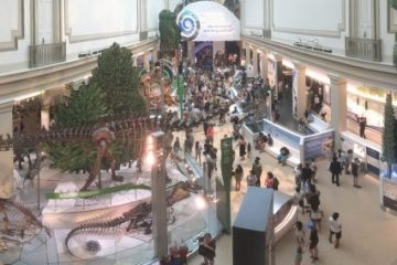 Overlook of the Deep Time exhibit at the Smithsonian, from the rear
