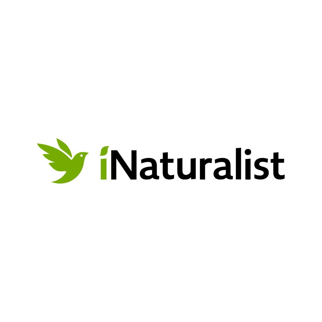 iNaturalist logo-https://www.inaturalist.org/
