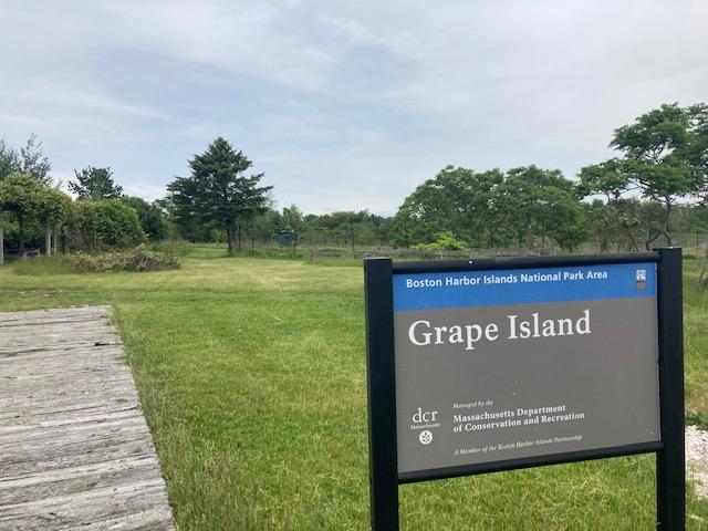 Welcome to Grape Island!